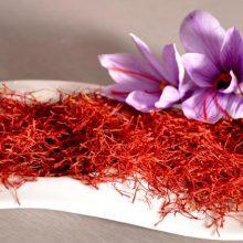 ویژگیهای زعفران سالم/ با این روشها زعفران تقلبی را شناسایی کنید
