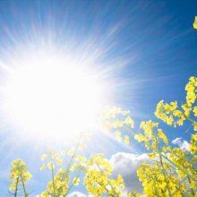 مدیر کل هواشناسی استان امروز در مورد شرایط جوی گیلان گفت : آسمان گیلان امروز صاف تا نیمه ابری و همراه با وزش باد گرم بویژه در ارتفاعات و دامنه هاست.