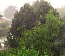 مدیرکل هواشناسی استان گیلان امروز گفت : آسمان گیلان امروز کمی ابری تا نیمه ابری و همراه با وزش خفیف باد گرم در ارتفاعات و دامنه هاست.