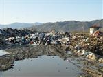 جایگاه موقت زباله در تالاب کیاکلایه لنگرود، پس از دو دهه، تعطیل شد.همچنین شهرداری شهرستان موظف به پاکسازی محل مورد نظر از هر گونه پسماند شد.
