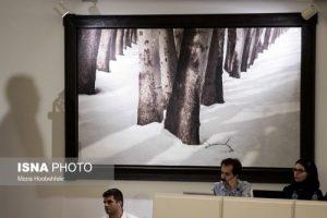 هفتمین حراج تهران با مجموع مبلغ ۲۶ میلیارد و ۱۱۳ میلیون تومان انجام شد.اثر سهراب سپهری از مجموعه درخت با مبلغ سه میلیارد و ۱۰۰ میلیون تومان فروخته شد