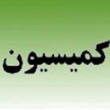 مسعود نصرتی با اعلام این خبر افزود:شهرداری در کمیسیون تهاتر برای تسهیل در کارشهروندان از جملهگرفتن پروانه و پایان کارو تسهیل؛ کمیسیونهای تسهیلگری
