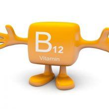 ویتامین B12 از اهمیت ویژه ای برای تولید DNA، اعصاب، و سلول های خون برخوردار است. همچنین، این ماده مغذی در حفظ سلامت مغز و عملکرد بی نقص سیستم ایمنی بدن انسان نقش دارد.