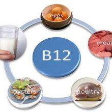 دکتر مهیار منصوری با بیان اینکه ویتامینهای گروه Bبهطورکلی در چرخه متابولیسم سلولی نقش دارند، افزود: این ویتامینها موجب افزایش متابولیسم بدن و رشد و افزایش تقسیم