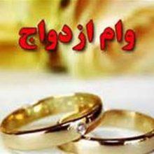 نمایندگان مجلس شورای اسلامی بانک مرکزی و بانکهای عامل را موظف کردند از منابع بانکی شامل حسابهای پسانداز، جاری و سپرده، قرضالحسنه به هر یک از زوجها وام ازدواج ۱۵ میلیون تومانی پرداخت کنند.
