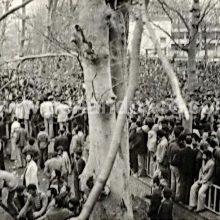 مومن صالحی-قسمت آخر دستگاه وحشت