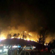 در پی وزش باد گرم، جنگلهای نقاط مختلف گیلان از جمله شهرستانهای لاهیجان، سیاهکل، لنگرود، شفت و ماسال دچار حریق شده است و همچنان ادامه دارد. آتشسوزی در جنگلهای گیلان