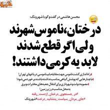 گشت ناموس در تهران راهاندزی میشود!