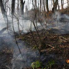 علت بروز آتش سوزی های وسیع و بی سابقه چند روز گذشته در جنگل های استان، عامل انسانی شامل گردشگران و مردم حاشیه نشین و جنگل نشینان بوده است.