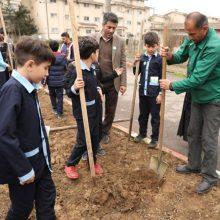 مراسم روز درختکاری در مجتمع لاکان شهر به روایت تصویر