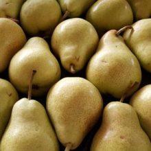 نایب رییس اتحادیه میوه و سبزی تهران درباره میوههای خارجی غیر مجاز و قاچاق تاکید کرد: فروش میوههای غیرمجاز و قاچاق ممنوع است و با فروشندگان متخلف برخورد میشود. میوههای ممنوعه