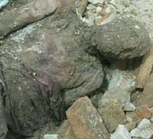 جسد کشفشده قطعا متعلق به رضاخان است که پس از احراز هويت مجددا دفن شده، محل دفن آن نيز کاملا مشخص و در دسترس است تا در صورت لزوم