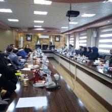 مرکز آموزش بازرگانی استان گیلان :میتاپس، فرصتی رایگان برای استفاده از تجربیات و دستاورد های کارآفرینان است.