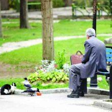 بعضی از کارکنان دولت به دلیل مشکلات خانوادگی، نیاز مالی یا سختی کار تمایلی به ادامه همکاری ندارند و تصمیم به جدایی دارند که به همین منظور به سمت بازنشستگی پیش از موعد میروند.