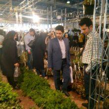سجاد محجوب به همراه جمعی ازکارشناسان این سازمان از هفدهمین نمایشگاه گل و گیاه شهر مشهد بازدید نمود.