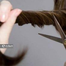 رئیس آموزش و پرورش فسا از صدور حکم معلم متخلفی خبر داد که موی ۹ دانشآموز را قیچی کرده بود. معلمی که موی ۹ دانشآموز را قیچی کرد