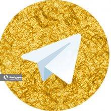 وزیراطلاعات عنوان کرده است که تلگرام طلایی متعلق به جمهوری اسلامی ایران است و اکنون ۲۵ میلیون عضو دارد و قانونی است.