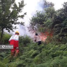 بیش از پنج هکتار از جنگلهای بخش «کومله» لنگرود طعمه حریق شده است که پنج تیم آتشنشانی از شهرهای همجوار برای مهار آن وارد عمل شدند.