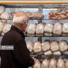 قیمت امروز مرغ گرم