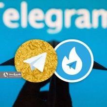 در حالی که هاتگرام و تلگرام طلایی تا پایان آذرماه برای مستقل شدن از تلگرام مهلت دوباره گرفتهاند، مدیر یک پیام رسان بومی از اعطای مجوز ورود ۲ هزار سرور
