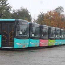 ورود ۱۱ اتوبوس جدید به ناوگان حمل و نقل درون شهری رشت