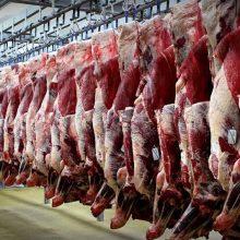 دپوی «ع»؛ مرکزی برای پخش گوشتهای وارداتی به برخی نهادها؛